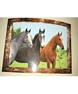 Shavel Horse Trio Plush Throw Horses - $34.99