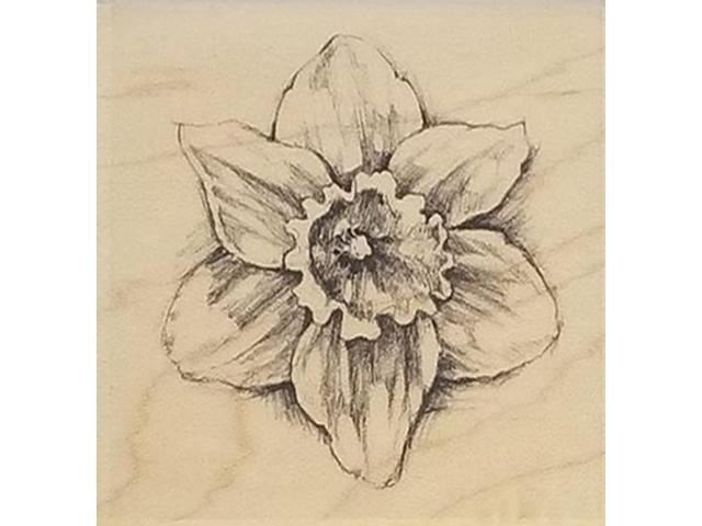 Inkadinkado-Daffodil -Rubber Stamp #97836