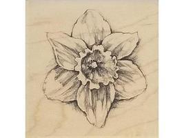 Inkadinkado-Daffodil -Rubber Stamp #97836 image 1