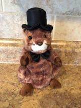 Ty Beanie Baby ~ PUNXSUTAWNEY PHIL 2004 the Groundhog ~  With Top Hat & ... - $9.99