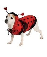 Lady Bug Pet Costume - $13.94