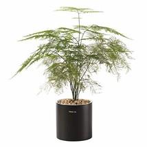 Plant Pots, 5.9inch Round Ceramic Orchid Pot Flower Pot Drainage Hole Pl... - $24.70