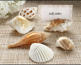 inch Shells by the Sea inch  Authentic Shell Place Card Holder with Mat... - $10.99