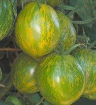 2000 Seeds of Green Zebra - Tomatoes Green - $59.40