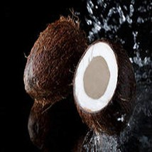 BLACK COCONUT FRAGRANCE OIL - 5 LB - FOR CANDLE & SOAP MAKING BY VIRGINI... - $87.25