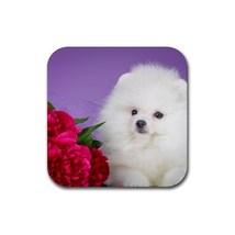 Cute Sweet Pomeranian Puppy Puppies Dogs Pet An... - $1.99