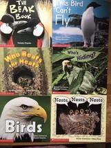 6 Paperback Books Science Vocabulary Readers Scholastic Birds Curriculum Unit - $15.34
