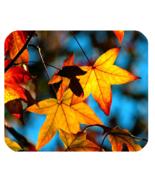 Mouse Pad Autumn Leaves Beautiful Nature Leaf Spring Design Animation Fa... - $6.00