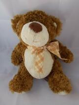 "Mary Meyer Teddy Bear Plush 12"" Family Christian Stores Stuffed Animal toy - $5.95"