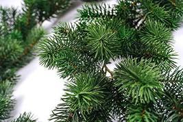 CraftMore Plastic Pine Garland 6' image 3