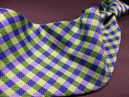 GEOFFREY BEENE  Green/blue  Mini PLAID   Mens 100  SILK  Necktie 8-1027 image 4