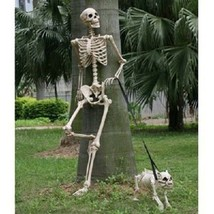 """Human Body Skeleton Model 60"""" Tall Posable Movable Joints Realistic Deco... - $88.12"""