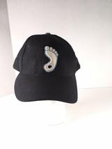 North Carolina Tarheels Zephyr Foot NCAA Team Logo Stretch Fit Hat Wool ... - $14.00