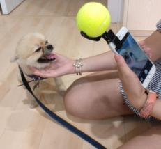 The Best Dog Selfies! Pooch Selfie: The Original Dog Selfie Stick - €9,42 EUR