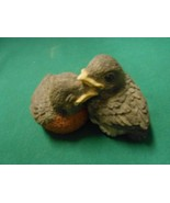 "Great Collectible BACKYARD BIRDS ""Robin Babies"".............FREE POSTAGE... - $14.44"