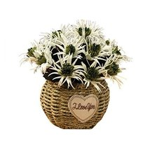 George Jimmy Artificial Flowers Cafe Decoration Table Ornaments-Dragon Begonia-G - $32.96