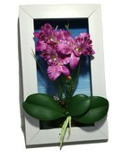 3D High Quality Fake Artificial Flower Home Office Wall Decor White Frame 7 x 12 - $7.76