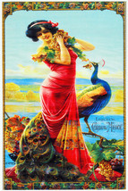 7942.Decoration Poster.Home Room wall fashion art design.Girl with Peaco... - $11.30+