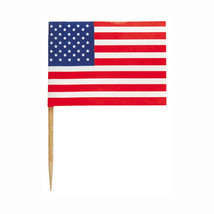 Flags of The World - 100 Count Flag Mini Toothpicks - $6.33+