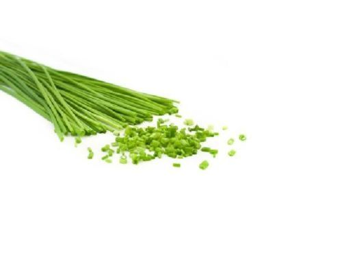 SHIPPED From US,PREMIUM SEED: 1870 Particles of  Chive Herb, Hand-Packaged