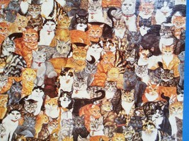 1991 BUFFALO GAMES Cat Puzzle Double Sided World's Most Difficult Jigsaw Puzzle - $12.40