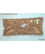 5 Mukhi Rudraksha Beads / Five Face Rudraksha - 9 mm  - $88.21+