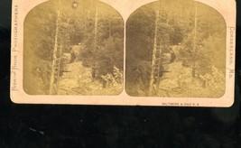 Stereoview Bishop Bros Baltimore Ohio Pittsburg Connellsville Railroad C... - $19.95