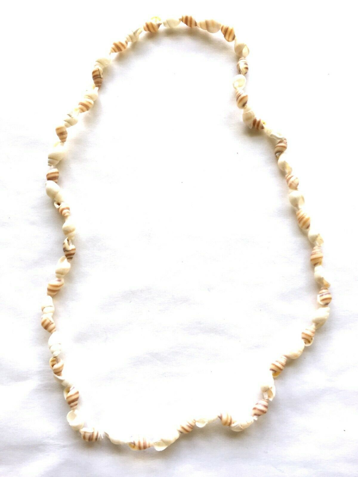 Sea Shell Necklace 22 inches No Clasp