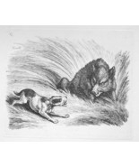 1801 ORIGINAL ETCHING Print by Howitt - Animals Wild Boar Attacked by Dog - $20.92