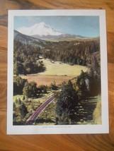 Old Vintage 1944 Picture Print California Mount Shasta Elevation 8x10 Fr... - $9.99