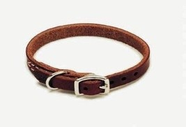 Pet Products DCP210312 Leather Latigo Dog Collar, 3/8 by 12-Inch - $14.21