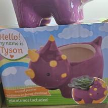 "Live Air Plant in Dinosaur Animal Planter, 5"" purple glazed ceramic pot, Tyson image 6"