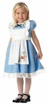 Lil' Alice In Wonderland Halloween Dress Up Play Costume Toddler 3-4 - $28.41