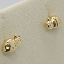18K YELLOW GOLD EARRINGS, ROUNDED MINI LADYBIRD, LADYBUG, 8 MM, MADE IN ITALY image 2