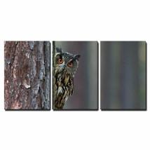 Wall26 - 3 Piece Canvas Wall Art - Eurasian Eagle Owl, Bubo Bubo, Hidden... - $61.37