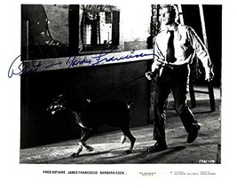 James Franciscus (d. 1991) Signed Autographed Glossy 8x10 Photo - COA Matching H - $79.19