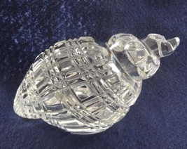 Waterford Crystal Conch Sea Shell Paperweight Hand Cooler Signed Wood Stand - $171.50