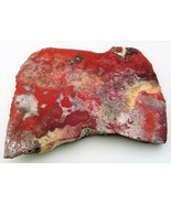 Mexican Crazy Lace Agate Gemstone Slab Cabbing Rough - $4.60