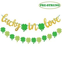 Yaaaaasss! St Patrick's Day Lucky in Love Banner Glitter Green Four Leaf Clover