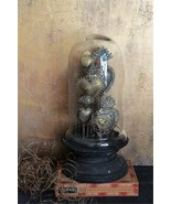 Antique Style  Tin Sacred Hearts on Wood Pedestal w/ Glass Cloche,15''H. - $193.05