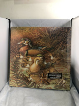 NEW Springbok 500 pc Puzzle Family Outing Ducks Factory Sealed - $15.00
