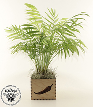 Custom Personalized Wood Planter - Laser Cut & Engraved - Wedding, Compa... - $40.00