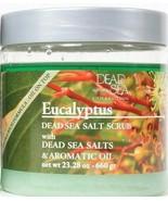 1 Dead Sea Collection Eucalyptus Salt Scrub With Dead Sea Salts & Aromat... - $16.99