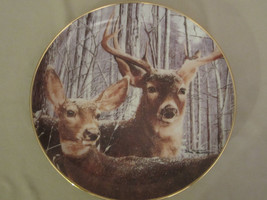 SNOWY ALERT collector plate BOB TRAVERS Wildlife WHITE TAILED DEER - $19.99