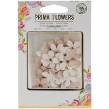 Prima Marketing Mulberry Paper Flowers  -Rylee, 36/Pkg - $9.78