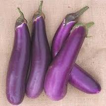 Purple Shine Hybrid Eggplant Seeds 25 seeds - $11.65