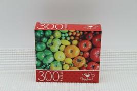 NEW 300 Piece Jigsaw Puzzle Cardinal Sealed 14 x 11, Rainbow of Veggies/... - $4.45