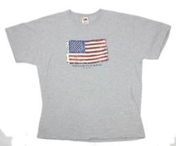 Old Glory US Flag Pennsylvania USA Gray S/Sleeve Mens Hanes Graphic T-Sh... - $11.93