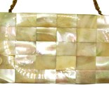 Vintage Evans Mother of Pearl Compact Purse