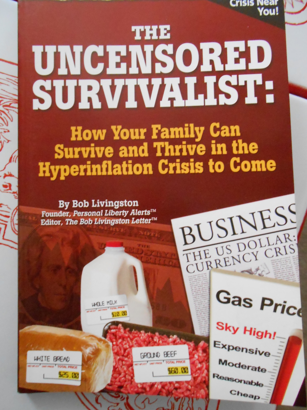 Primary image for The Uncensored Survivalist: How Your Family Can Survive & Thrive in the Hyperinf